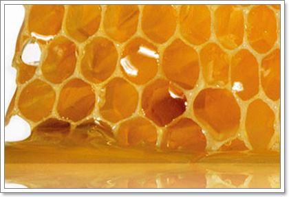 Мед и прополис от язвы и гастрита