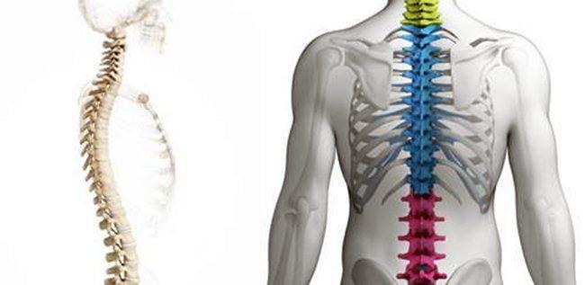 Грудной остеохондроз: симптомы, 4 степени и их лечение