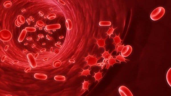 кровь в артерии