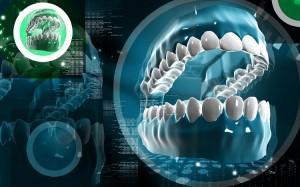 Метод регенерации или выращивания новых зубов вместо удаленных по Норбекову, Шичко и разработки ученых