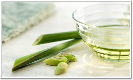 Эфирное масло лемонграсса полезные свойства и способы применения