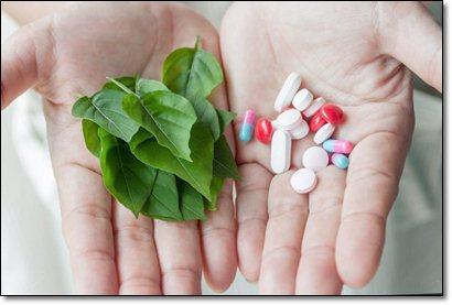 Фитоэстрогены естественные гормоны для женского здоровья