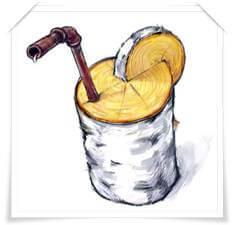Древесный сок березовый и другие