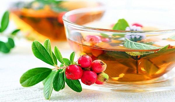 Рецепт настоя плодов дикой розы