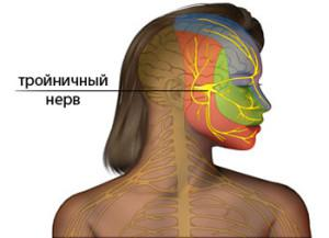 Все о воспалении тройничного нерва: симптомы невропатии, причины и медикаментозное лечение антибиотиками