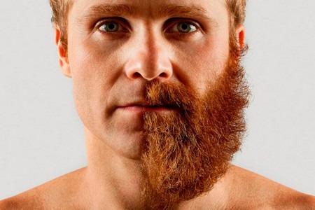 Мужчина с бородой на пол лица