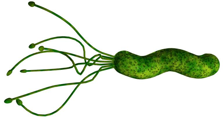 Наличие хеликобактерии