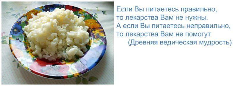 Тибетский кефирный (молочный) гриб: польза и применение