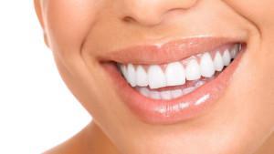 Внешнее и внутреннее строение человеческих зубов на верхней и нижней челюсти с фото, значение каждого из элементов