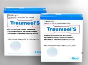 Траумель: схема лечения заболеваний пародонта с помощью мази и уколов в десны